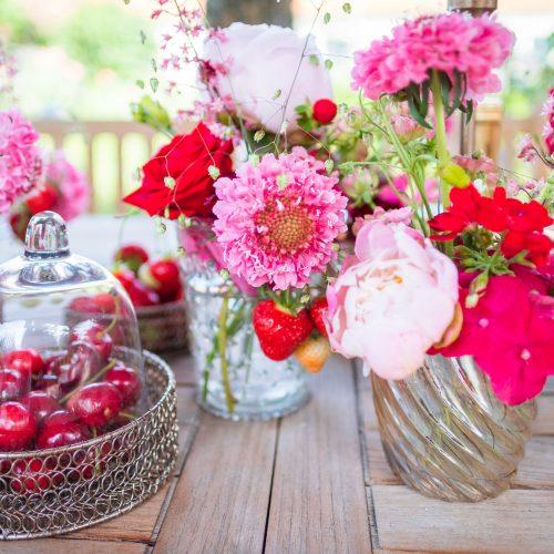 Sommerblumen-Blumen-Ruprecht-Gleisdorf-9